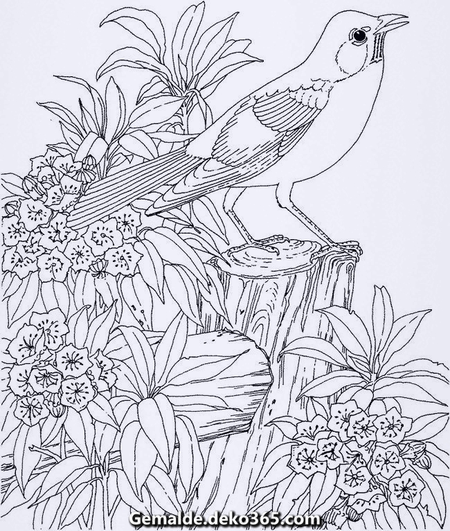 malvorlagen zu händen erwachsene vogel zeichnung mit