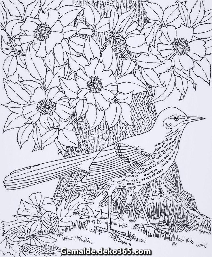 ausmalbildererwachsenenaturumweltmalvorlagevogel
